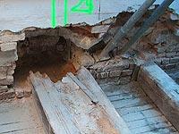 Bautenschutz, Holzbefall, Schimmelbefall